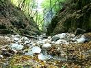 Cascadele Borzești