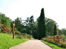 Grădina Botanică Cluj-Napoca